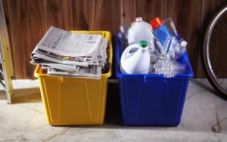 Виды бытовых отходов и особенности утилизации мусора