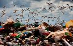 Классы опасности бытовых отходов по воздействию на окружающую среду